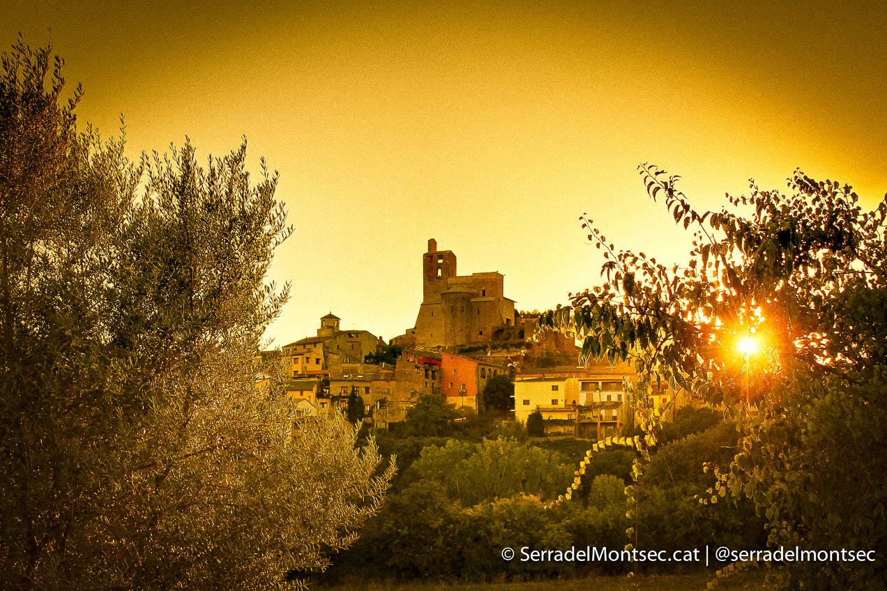 Castell i Canònica de Sant Pere. Àger.