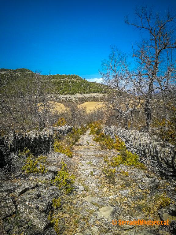 Camí ral, empedrat i enfaixat amb marges de pedra seca i lloses, que unía Girbeta amb el Castell Girbeta i Montgai. Viacamp i Lliterà. Ribagorça, Osca. Aragó, Montsec de l'Estall.