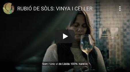 Vídeo presentació del Celler de Rubió de Sòls.