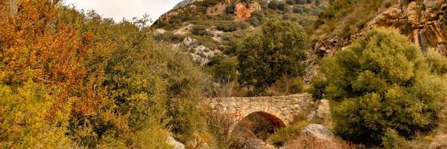 Pont de la Gata i el Camí de l'Escala del Pas Nou. Vilanova de Meià, La Noguera