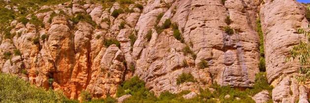 Jaciment de la Cova del Parco. Alòs de Balaguer.