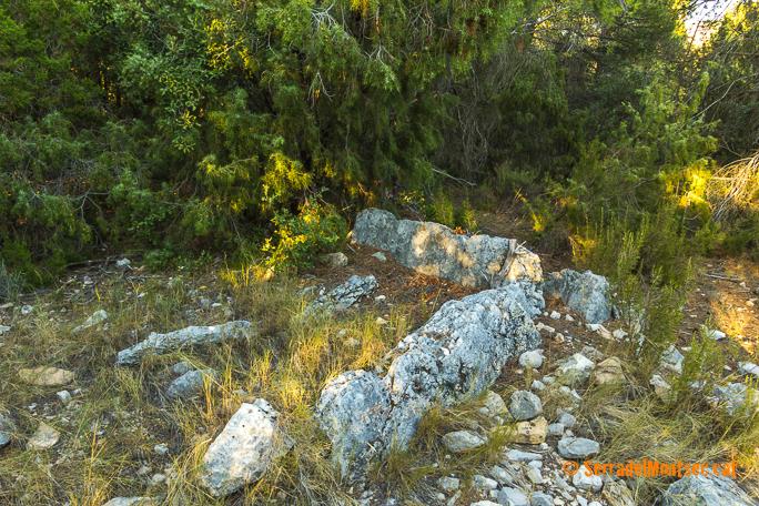 Dolmen de l'Estall Sud o dolmen de Les Salteres II. L'Estall, Viacamp i Lliterà, Ribagorça. Osca, Aragó. Montsec d'Estall.